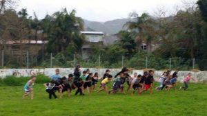 WPSSA cross country